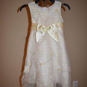 Little Girls Beautiful Dress